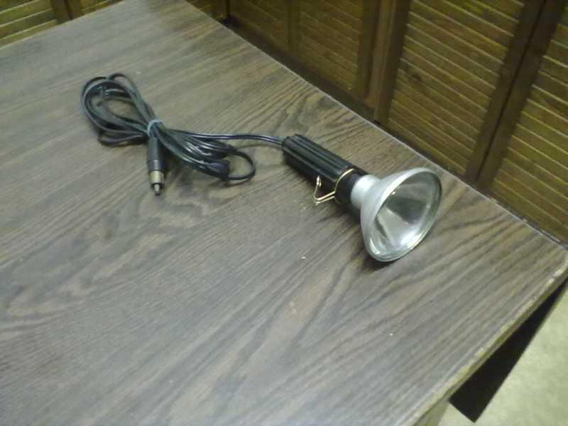lampyka.jpg